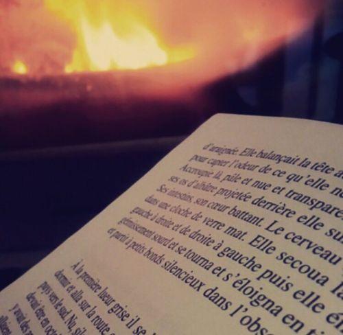 Lecture devant la cheminée. Livre Cheminée Feu Lecture Passe Temps