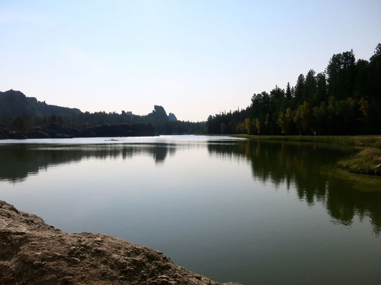 Morning calm and reflections on Sylvan Lake in Custer State Park in South Dakota Custer State Park Travel Travel Destinations View Peaceful Wilderness Morning Calm Water Reflection Lake Tree Tranquil Scene Tranquility Nature Beauty In Nature Scenics Outdoors No People Day Sky