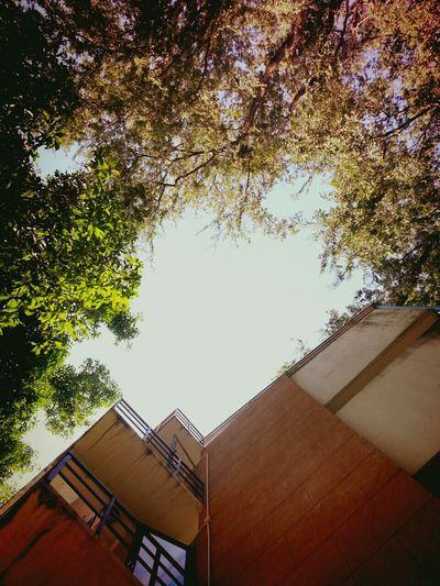 Saturday 1st Dormitory Khonkaen University