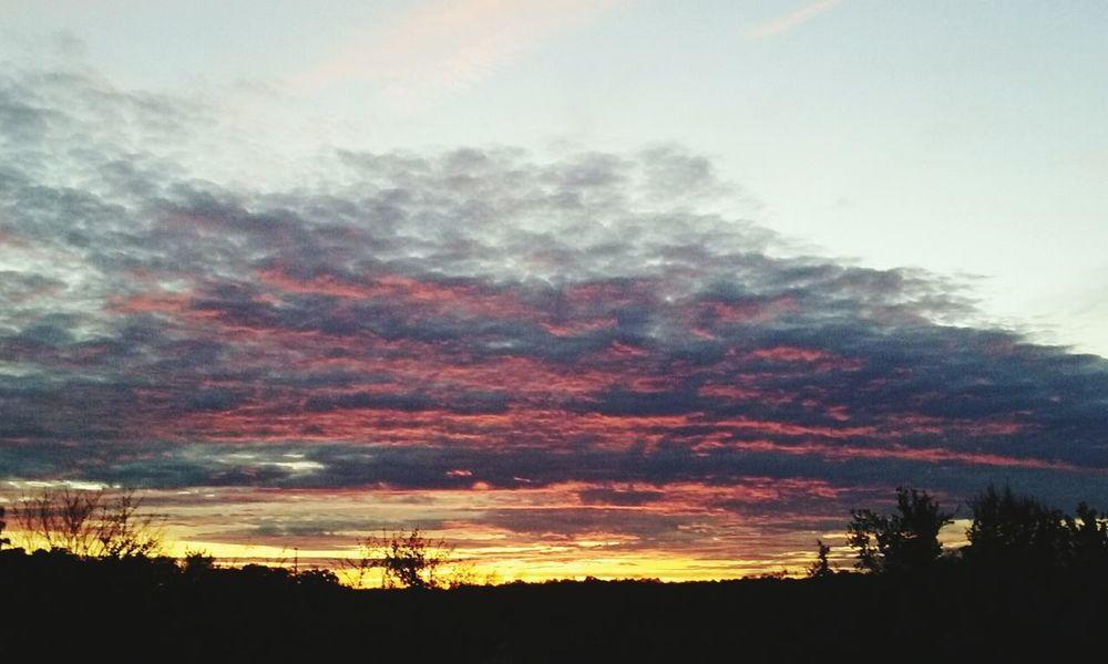 11.16.15 5:17 pm Northcarolina Raleigh Clouds And Sky Sunset CeBPhotography Skyview Nature