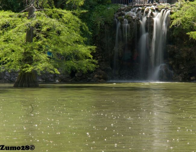 Cascada En El Parque Del Buen Retiro Madrid Agua Parque Del Retiro
