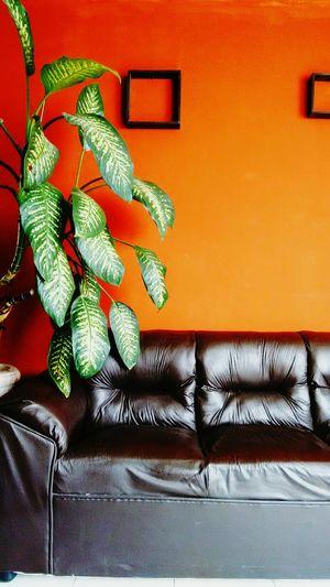 Interior Design Homesweethome Lookinggreat
