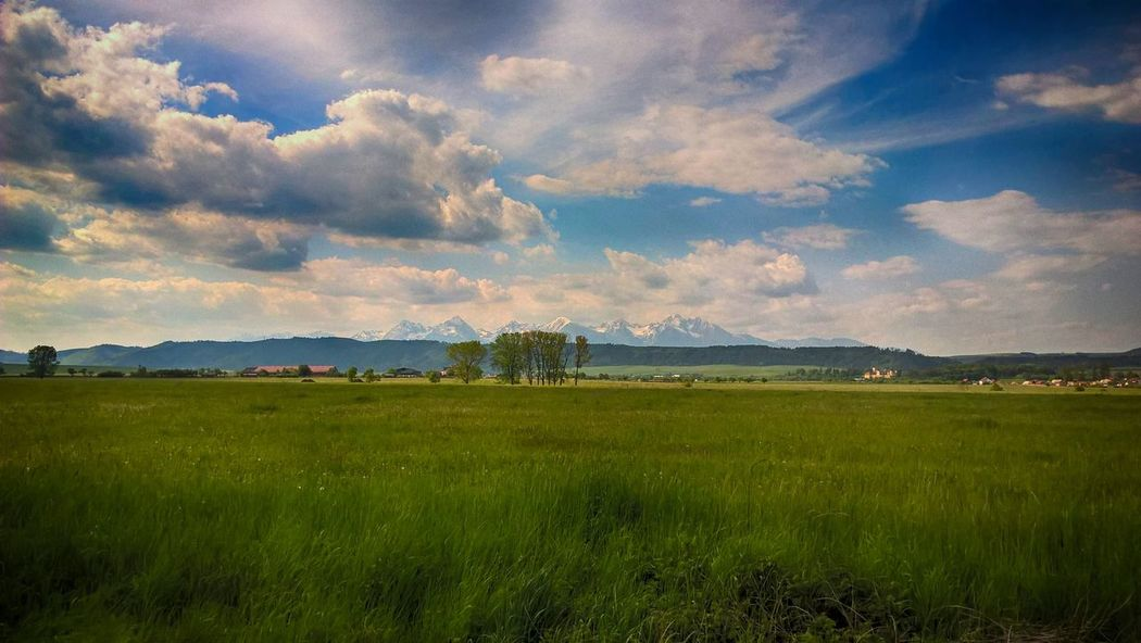 Beauty In Nature Cloud Cloud - Sky Cloudy Day Field Grass Grassy Green Color Growth Hill Horizon Over Land Idyllic Landscape Mountain Nature Nik Collection No People Outdoors Remote Rural Scene Scenics Sky Tranquil Scene Tranquility