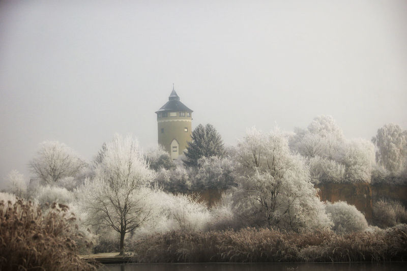 Wasserturm Architecture Bare Tree Beauty In Nature Branch Day Growth Heilbronn Nature No People Outdoors Sky Tree Winter Winter_collection Winterwonderland