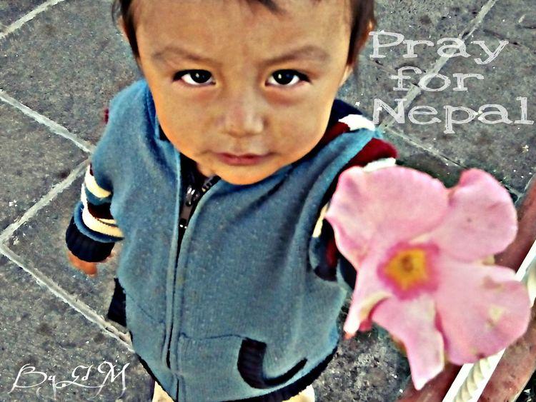 PrayforNepal People Flowers To You Flor Para Ti