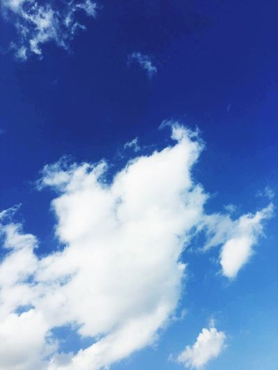 Blue Sky Cloud - Sky Nature White Color Backgrounds Low Angle View Cirrus Heaven Beauty In Nature Wispy Scenics No People Day Outdoors Sky Only First Eyeem Photo