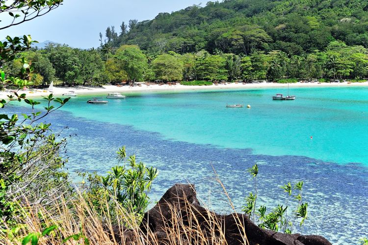 Baie Ternay, Island Mahé Bay Beach Blue Day Destination Exotic Island Landscape Luxurous Mountain Nature Ocean Outdoors Paradise Romantic Scenic Scenics Sea Sky Solitude Tranquil Scene Tranquility Travel Tropical Water