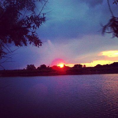 Закат дерево маслина вода небо облака Ставок Summer Nature Rates Water Clouds Sunset Sky Trees Olive лето Природа