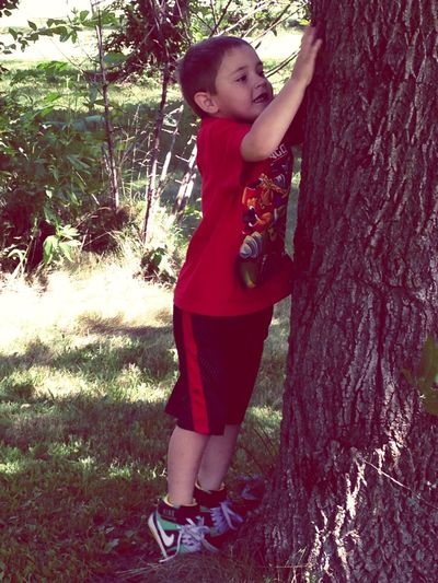 My little nature lover. My oldest grandson. ❤️ Portrait Of A Toddler Cool Kids Tadaa Community Trees Hugging A Tree EyeEm Nature Lover My Grandson Nature From My Point Of View Taking Photos