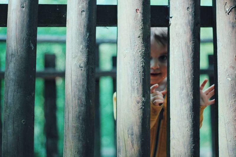 Boy Seen Through Wooden Railing On Footbridge