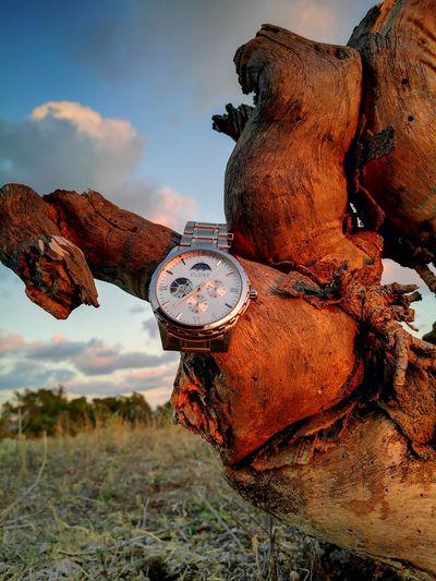 my watch wreting on a tree log at sunset (Huawei p9) Tree Log Whatch Headwear Sky Close-up
