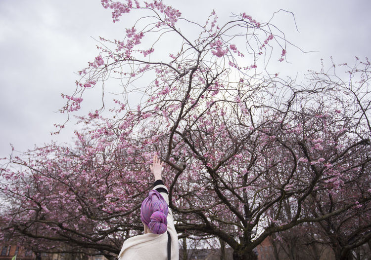 Low section of woman with pink cherry blossoms against sky