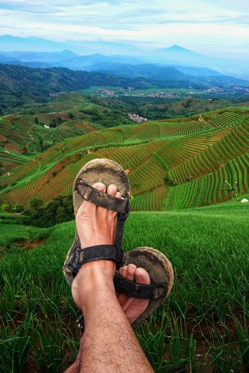 Foot Footpath Green Color Human Body Part Personal Perspective One Person Grass Human Leg Field Low Section Landscape Nature Agriculture Cloud - Sky Outdoors Lifestyles Adult People Beauty In Nature Day Real People Green Color Adults Only