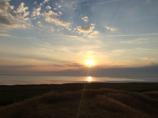 Dänemark Denmark Dünen Nordsee Sunset Wattenmeer