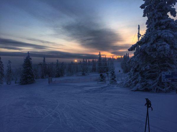 Showcase: January Skiing Klövsjö Coldaf Sunrise Sweden