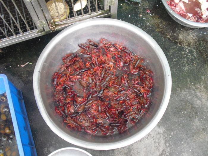 crayfish China Photos Food Tasting Travel China Crayfish Food Fresh Food Healthy Eating Seafood