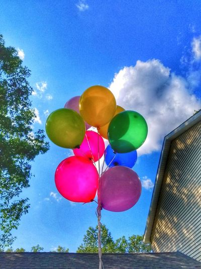 Up, up and away! Tree Multi Colored Blue Balloon Helium Balloon Sky Cloud - Sky Helium Bunch Bundle