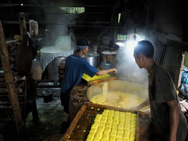 tofu factory Working Factory Industry Men Capture Tomorrow