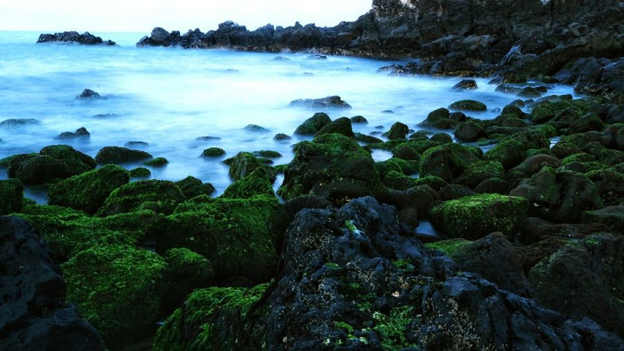 Nature Jejuisland Jeju_beach Jeju Travel Beach View Beauty Travel Destinations The Great Outdoors - 2017 EyeEm Awards Eyeem Philippines Water Rocks And Water Rocks On The Shore Long Exposure Shot