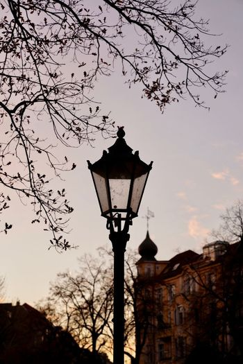 sunset in the city * Berlin Viktoria-luise-platz Street Light Sky Tree Lighting Equipment Low Angle View Street Plant Building Exterior Nature Architecture Branch Bare Tree No People Silhouette Outdoors Sunset Old Building Light Electric Lamp Antique