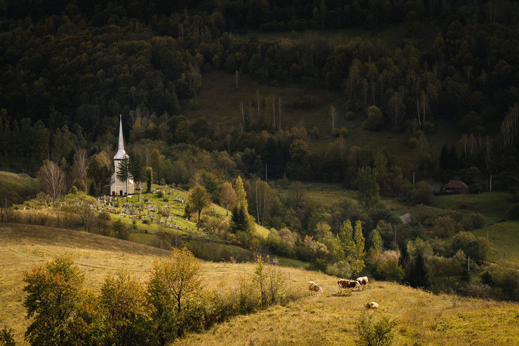 High angle view of church and trees on against mountain in autumn