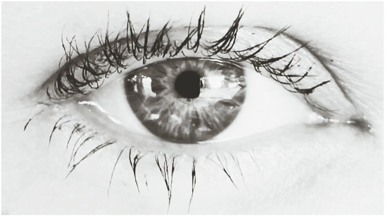 human eye, eyelash, eyesight, human body part, eyeball, sensory perception, one person, iris - eye, macro, real people, looking at camera, vision, close-up, portrait, outdoors, day, people