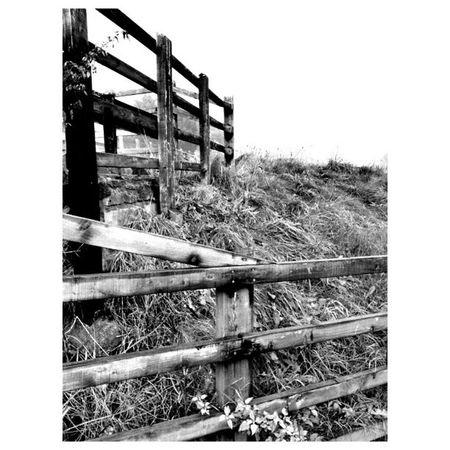 Landscapelovers Instagram Winter BWWinter December travelingram