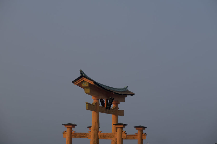Animal Animal Themes Animal Wildlife Animals In The Wild Architecture Bird Birdhouse Built Structure Clear Sky Copy Space Creativity Day Low Angle View Nature No People Outdoors Religion Sky Vertebrate Wood - Material