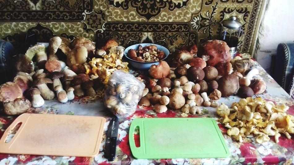 #mushrooms Mushrooms 🍄🍄 Mushroom Nature Boletus боровик Fungus Белый гриб лето Chanterelle Mushrooms Chanterelle грибы лисички грибнойсезон Природа деревня маслята Горная Шория Таштагол Variation Choice Close-up