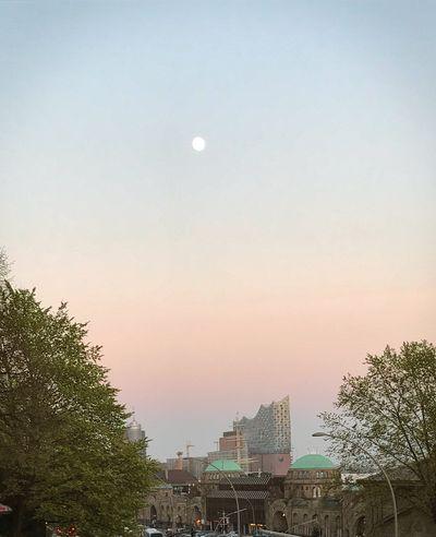 Moon Elbphilharmonie Elphie Elbphilharmoie Elbphilharmonie Plaza Sunkissed Sunset Full Moon Hamburgmoon Hamburger Hafen Hamburgmeineperle