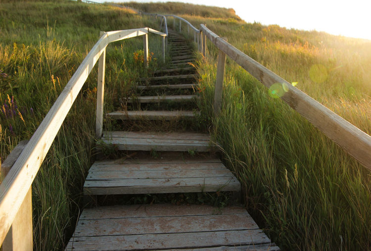Stairs on the beach. Summertime Architecture Beach Day Direction Field Footpath Grass Growth Land Landscape Nature No People Outdoors Plant Railing Sea Staircase Steps And Staircases Strair Summer Sunlight The Way Forward Tranquility Wood - Material