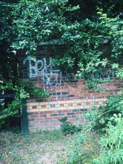 Bey Graffiti