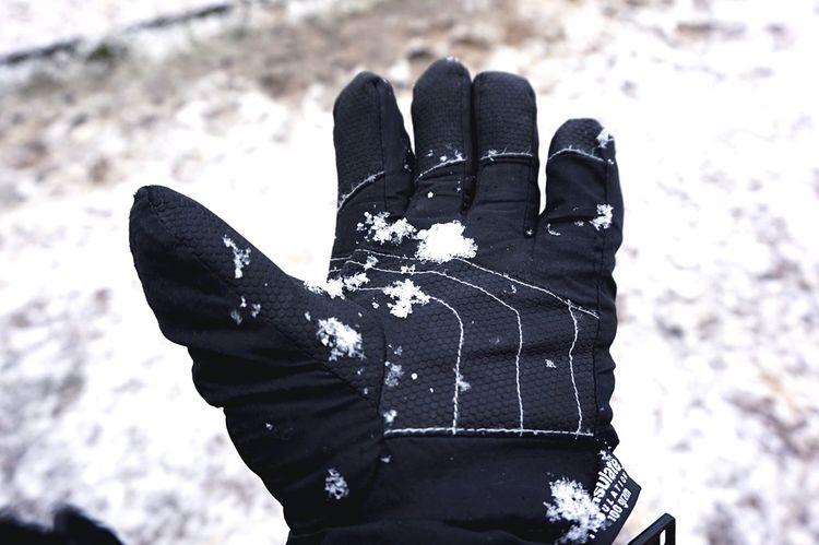 It's Cold Outside Snow is back Snow Snowing Black Ski Glove Gloves White Open Edit Hand Left Hand Cold Cold Day Open Hand Snow ❄ Minimalism Snow Flakes Flakes Simplicity Simple Photography Snow Day Enjoying Life That's Me Winter Wintertime
