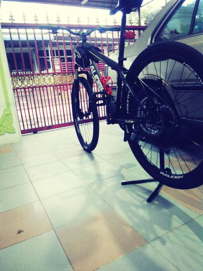 MTB Cycling Raleigh Shimano