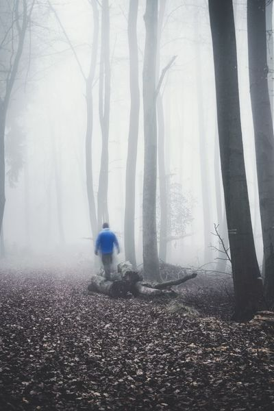 Misty forest Fog Tree Day Outdoors Nature Walking Around Real People People Men Me Morning One Person Atmosphere Mood Forest Bestoftheday EyeEmBestPics Traveling Clouds Spooky Travel Destinations Travel Nature Weather Scenic
