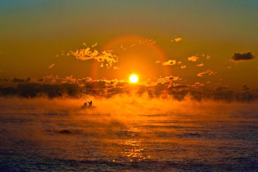 Begin of a sea Sunrise Nature Beauty In Nature Fog Seafog Seagull