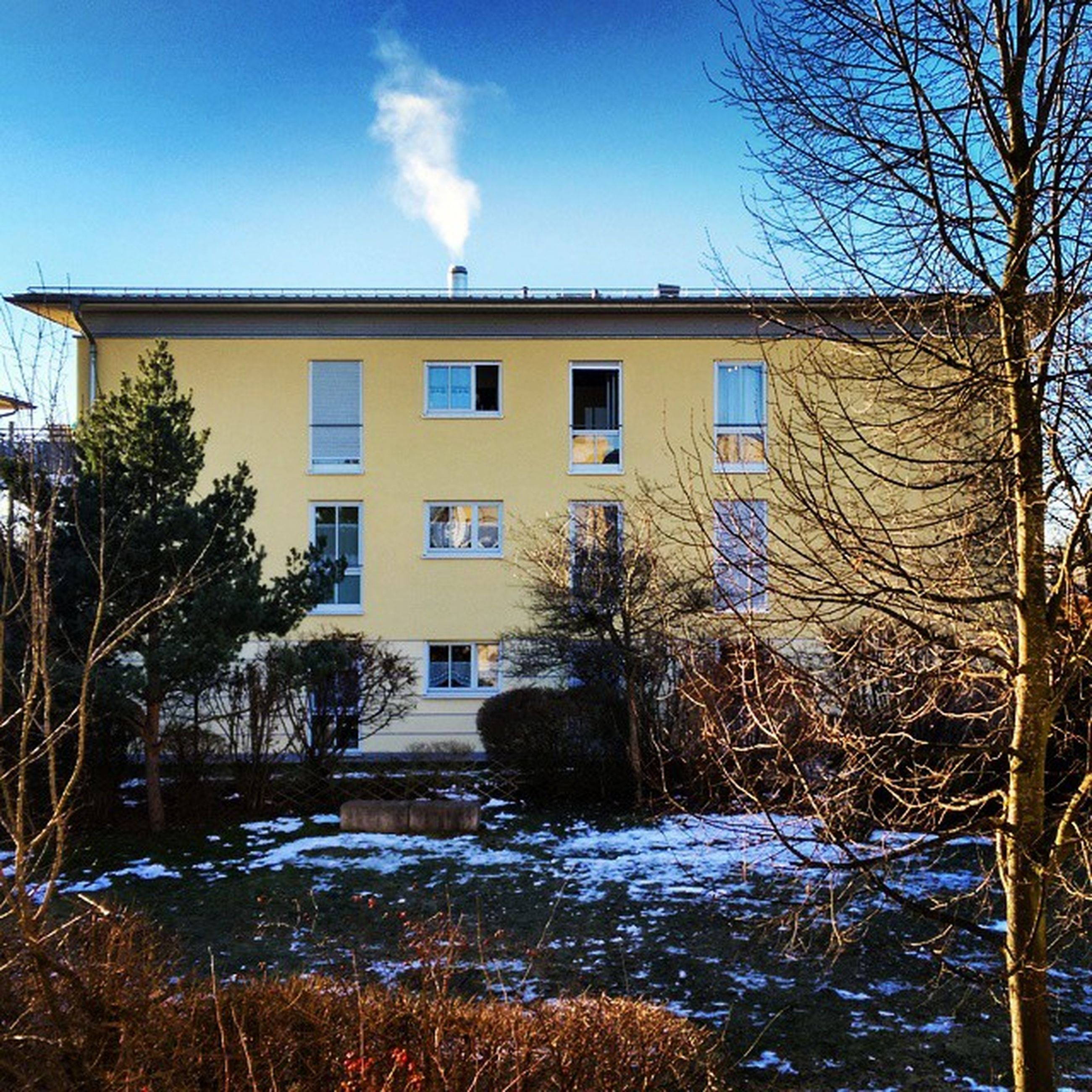 building exterior, architecture, built structure, snow, tree, bare tree, house, winter, cold temperature, residential structure, residential building, sky, window, season, blue, covering, day, no people, branch, nature