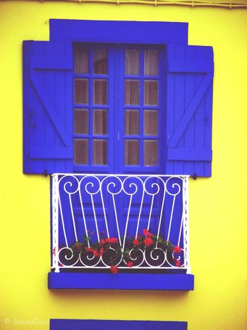 Blue door. Doors Yellow Blue