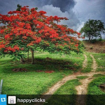 ⛔️Thank You⛔️Repost from @happyclicks_ with @repostapp --- Complimenti a @duppy__kankera per questa fantastica foto 💫 • The original page • Per apparire sul profilo: 1⃣ Segui @happyclicks_ 2⃣ Tagga le foto con Myhappyclicks 3⃣ Riposta la foto sul tuo profilo 💫