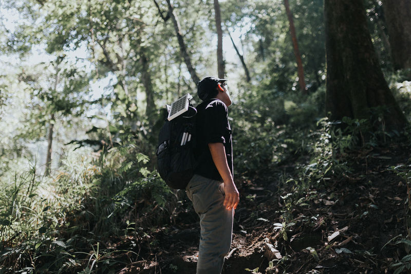 Hiker Standing Amidst Trees At Forest