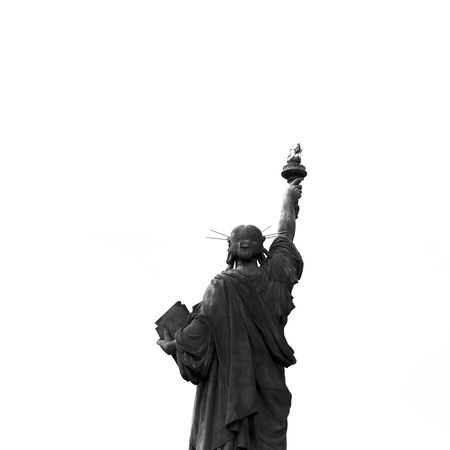 Paris Liberté Black & White Freedom Liberty Statue Statue Of Liberty B&w B&w Photography Black Black And White Black And White Photography Black&white Blackandwhite Blackandwhite Photography Bnw Contrast Low Angle View Sculpture Statue Travel Destinations White White Background National Icon Symbolism Migrating Sculpted Patriotism National Monument Monument