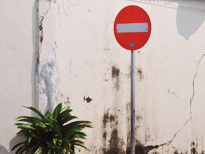 Stop Illustration Red Stop Red Close-up Do Not Enter Sign Stop Sign Warning Sign Road Warning Sign Warning Warning Symbol Palm Leaf
