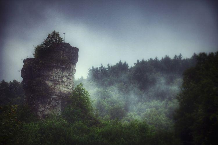 Könnte man nicht nach dem Regen, wenn der Wald zu atmen beginnt und zarter Dunst aufsteigt, den vom Wind durchwehten Wolkengespinsten alle Sorgen mitgeben, damit sie sich in Luft auflösen? After The Rain Cloudy Exceptional Photographs EyeEm Nature Lover EyeEm Gallery EyeEmNewHere Foggy Weather ForTheLoveOfPhotography Fränkische Schweiz, DE Trees Walking Around Weather Wishes Adventure Beauty In Nature Clouds And Sky Eye4photography  Foggy Foggy Landscape Forest Forest Photography Landscape No People Take A Break Untamed Heart The Week On EyeEm