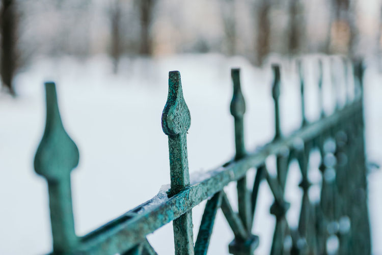 Close-up of metal fence against blurred background