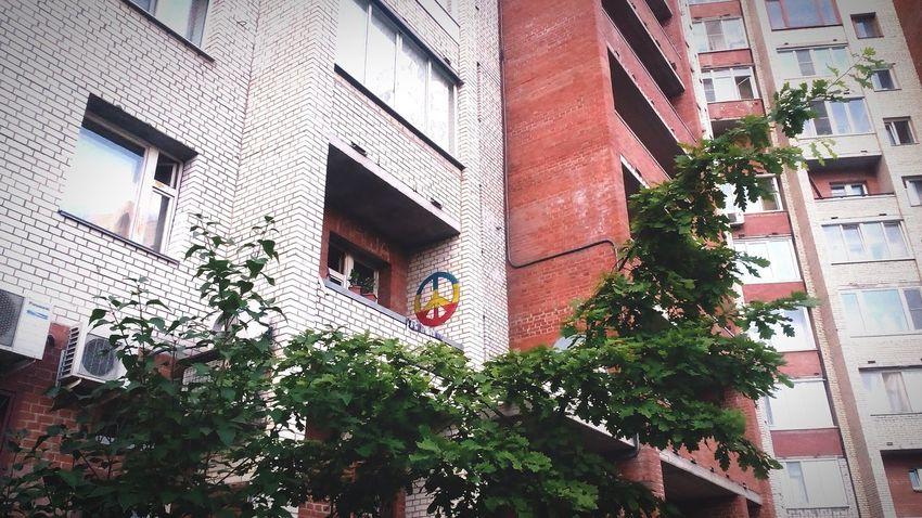 ✌ Pease RASTA свояатмосфера SaintP звездная улицыгорода балкон яркость Taking Photos Hello World