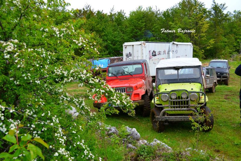 Jeeps Beauty In Nature Day Grass Grassy Green Green Color Growth Land Vehicle Landscape Lush Foliage Mode Of Transport Nature No People Non-urban Scene Outdoors Parked Plant Remote Rural Scene Scenics Sky Stationary Tranquil Scene Tranquility Tree