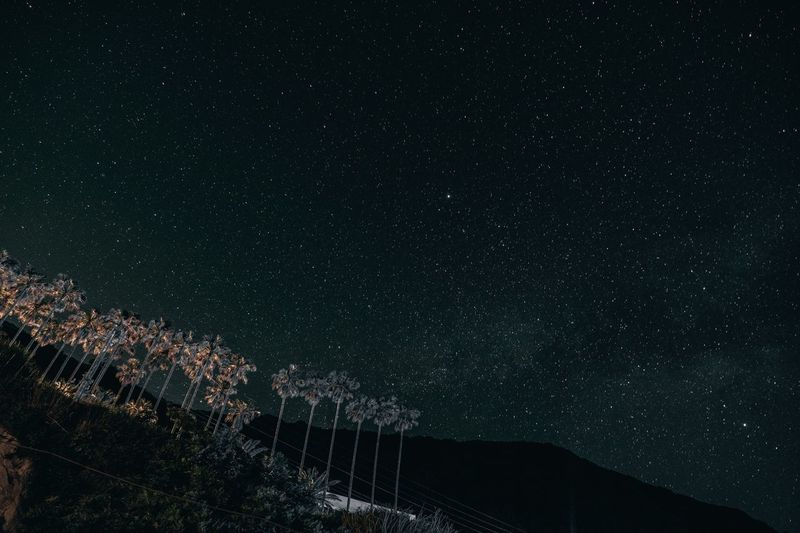 Low angle view of star field sky at night