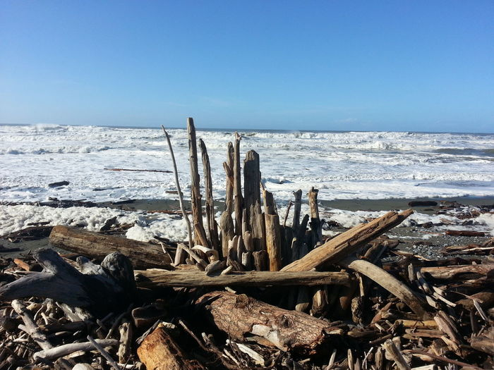 High Angle View Of Driftwood On Beach
