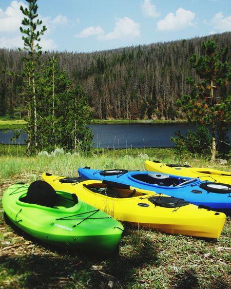 Water Day Trees Kyack Green Color Yellow Color Forest Bridger Lake Bridgerlake Nature Photography Landscape Photography Blue Water Bluecolor