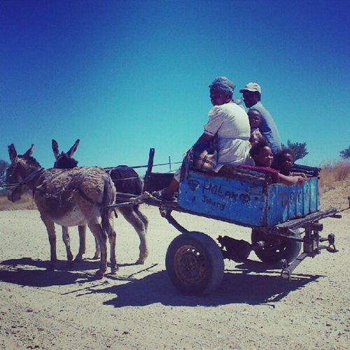 Donkey cart in Groot Aub!